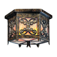 Troy Lighting Gables 2 Light Outdoor Flush Mount in Charred Gold C9900CG