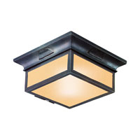 Newton 2 Light 13 inch Old Bronze Outdoor Flush Mount in Fluorescent