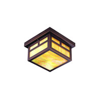 Troy Lighting Monterey 1 Light Outdoor Flush Mount in Oil Rubbed Bronze CIH5854OB