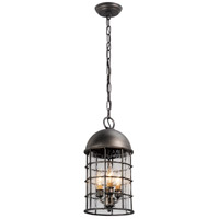 Troy Lighting Charlemagne 3 Light Outdoor Hanging Lantern in Aged Pewter F4437