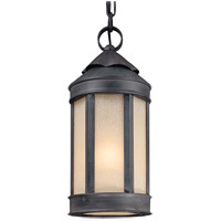 Troy Lighting Andersons Forge 1 Light Outdoor Hanging Lantern in Aged Iron F1467AI