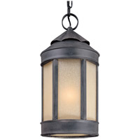 Troy Lighting Andersons Forge 1 Light Outdoor Hanging Lantern in Aged Iron F1468AI