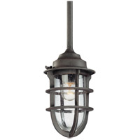 Troy Lighting F1860NR Wilimington 1 Light 6 inch Nautical Rust Outdoor Pendant