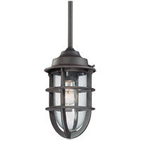 Troy Lighting F1862NR Wilimington 1 Light 7 inch Nautical Rust Outdoor Pendant