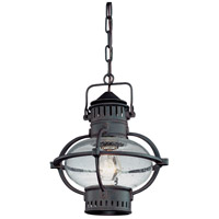 Troy Lighting Portsmouth 1 Light Outdoor Hanging Lantern in Boston Bronze F1877BB