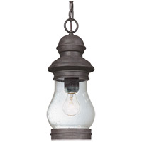 Troy Lighting Hyannis Port 1 Light Outdoor Hanging Lantern in Hyannis Port Bronze F1888HPB