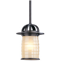 Troy Lighting Tiburon 1 Light Outdoor Hanging Lantern Small in Architectural Bronze F2257ARB