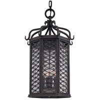 Los Olivos 4 Light 14 inch Old Iron Outdoor Hanging Lantern in Incandescent