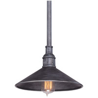 Troy Lighting Toledo 1 Light Outdoor Pendant in Old Silver F2773