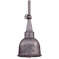 Raleigh 1 Light 10 inch Old Silver Outdoor Hanging Lantern in Incandescent