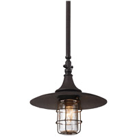 Troy Lighting F3228 Allegany 1 Light 13 inch Centennial Rust Outdoor Hanging Lantern