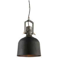 Troy Lighting Hanger 31 1 Light Pendant in Old Silver With Aged Brass Accents F3546