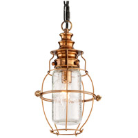 Troy Lighting Little Harbor 1 Light Outdoor Hanging Lantern in Aged Brass With Forged Black Accents F3577