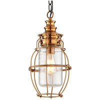 Troy Lighting Little Harbor 1 Light Outdoor Hanging Lantern in Aged Brass With Forged Black Accents F3578