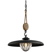 Troy Lighting Murphy - Dish Pendant - 24 inchW - Vintage Iron Finish - Clear Seeded Glass F4906