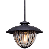 Troy Lighting Murphy - Outdoor Pendant - 13 inchW - Vintage Bronze Finish - Clear Seeded Glass F5046