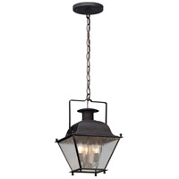 Adams 1 Light 7 inch Colonial Iron Outdoor Hanging Lantern