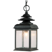 Troy Lighting Adams 1 Light Outdoor Hanging Lantern in Colonial Iron F5078CI