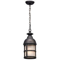 Troy Lighting Webster - Outdoor Pendant - Incandescent - Vintage Bronze Finish - Clear Seeded Outside/ Frosted Inside Glass F5157