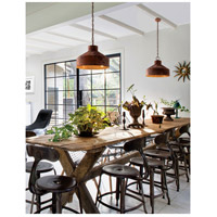 Troy Lighting F5264 Rise & Shine 4 Light 26 inch Rust Patina Pendant Ceiling Light alternative photo thumbnail