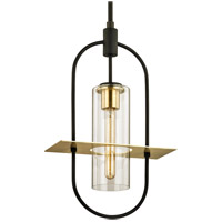Troy Lighting F6397 Smyth 1 Light 13 inch Dark Bronze with Brushed Brass Outdoor Pendant