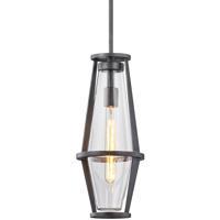 Troy Lighting F7617 Prospect 1 Light 8 inch Graphite Hanger Ceiling Light