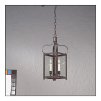 Bradford 2 Light 11 inch Charred Iron Hanging Lantern Ceiling Light in Clear
