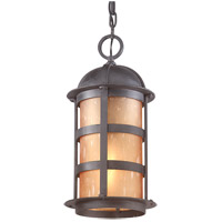 Aspen 1 Light 9 inch Natural Bronze Outdoor Hanging Lantern