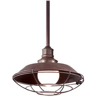 Troy Lighting Circa 1910 1 Light Outdoor Hanging Downlight in Old Rust F9273OR