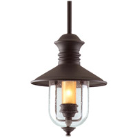 Old Town 1 Light 11 inch Natural Bronze Outdoor Hanging Lantern