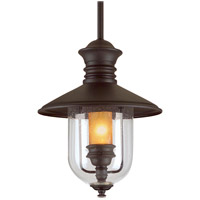 Old Town 1 Light 13 inch Natural Bronze Outdoor Hanging Lantern