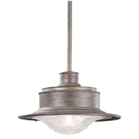 Troy Lighting F9395OG South Street 1 Light 10 inch Old Galvanize Outdoor Hanging Downlight in Old Galvanized