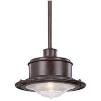 South Street 1 Light 10 inch Old Rust Outdoor Hanging Downlight