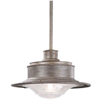 South Street 1 Light 14 inch Old Galvanize Outdoor Hanging Downlight in Old Galvanized