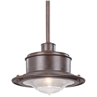 Troy Lighting F9396OR South Street 1 Light 14 inch Old Rust Outdoor Hanging Downlight