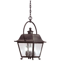 Troy Lighting Bristol 4 Light Outdoor Hanging Lantern in Natural Bronze F9446NB
