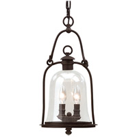 Troy Lighting F9466NB Owings Mill 2 Light 9 inch Natural Bronze Outdoor Hanging Lantern