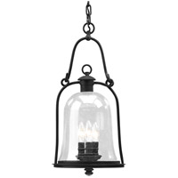 Troy Lighting Owings Mill 3 Light Outdoor Hanging Lantern in Natural Bronze F9467NB