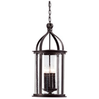 Troy Lighting Scarsdale 4 Light Outdoor Hanging Lantern in Forged Black F9477FBK