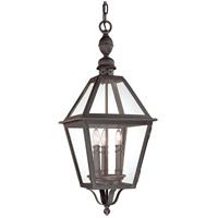 Townsend 3 Light 11 inch Natural Bronze Outdoor Hanging Lantern