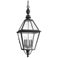 Townsend 4 Light 14 inch Natural Bronze Outdoor Hanging Lantern