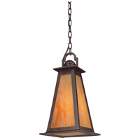Troy Lighting Lucerne 1 Light Outdoor Hanging Lantern in Statuary Bronze F9887SBZ