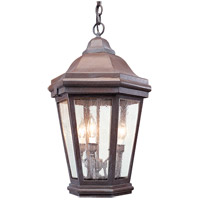 Verona 1 Light 16 inch Bronze Patina Outdoor Hanging Lantern in Incandescent