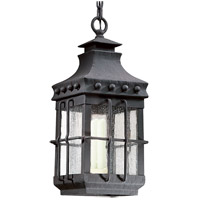 Troy Lighting Dover 1 Light Outdoor Hanging Lantern in Natural Bronze FCD8973NB