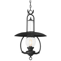 Troy Lighting La Grange 1 Light Outdoor Hanging Lantern in Old Bronze FCD9013OBZ
