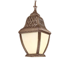 Troy Lighting Biscayne 1 Light Outdoor Hanging Lantern Fluorescent in Biscayne FF2087BI