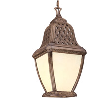 Troy Lighting Biscayne 1 Light Outdoor Hanging Lantern Fluorescent in Biscayne FF2088BI