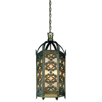 Troy Lighting Gables 1 Light Outdoor Hanging Lantern Fluorescent in Charred Gold FF9908CG