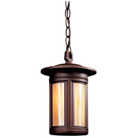 Troy Lighting Highland Park 1 Light Outdoor Hanging Lantern in Oil Rubbed Bronze FIH6913OB