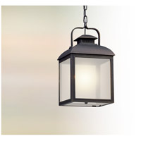 Chamberlain LED 10 inch Vintage Bronze Hanging Lantern Ceiling Light